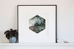#16-Forest-fern-front.jpg