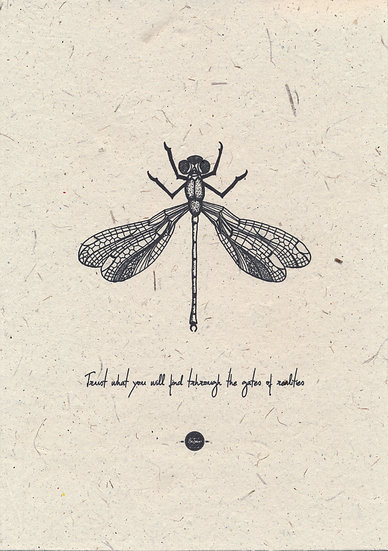 Krachtdier - Libelle