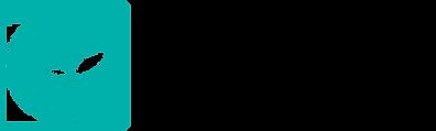 LocalSurfboardsProject_Logo