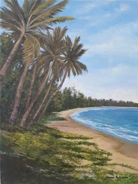 Tropical Solitude