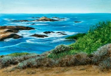 Pt. Lobos View