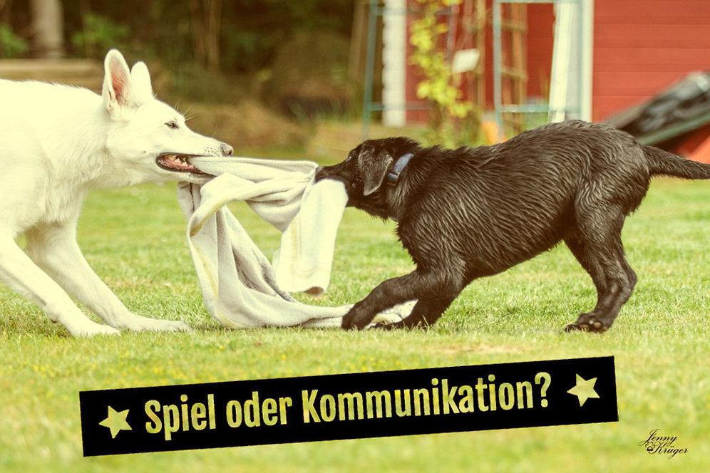 Diashow_1_Spiel_oder_Kommunikation Kopie