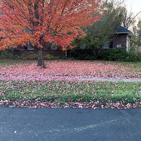 Leaf removal season is here. Show-Me Mow