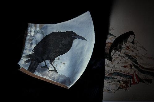 Face mask 'ravens'