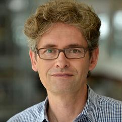 Torsten Casimir