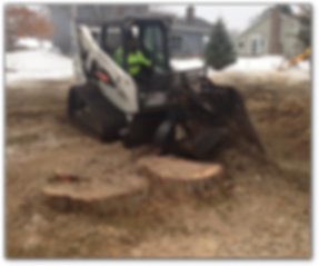 Stump Grinding Services.png