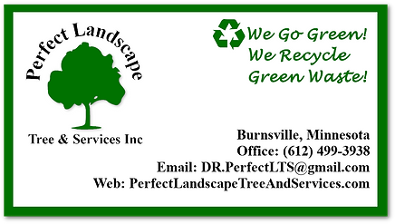 Business Card Web.png