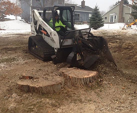 Stump Grinding Home.jpg