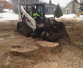 Stump Grinding Home.jpg