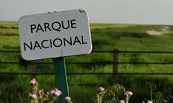 PARQUE-N.-DOÑANA