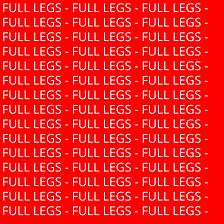 FULL LEGS.png