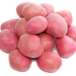 Bhutan Potato  - 1 Kg
