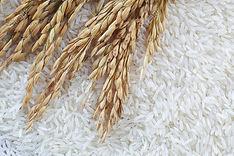 Rice & Other Grains.jpg