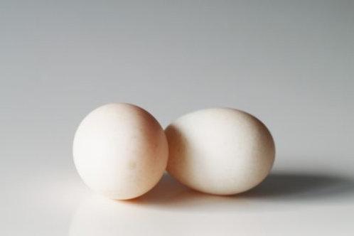 Duck Egg - 30 Pcs