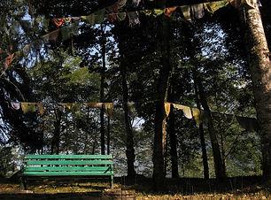 Norbugang park.jpg