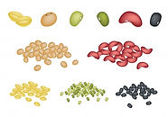 set-different-beans-white-background_540