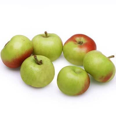 Tiny Apple -1 kg