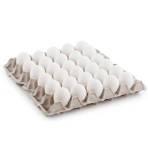 Fresh White Eggs Tray - 30 Pcs