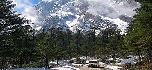 yumthang valley.jpg