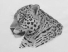 Mick Jaguar.jpg