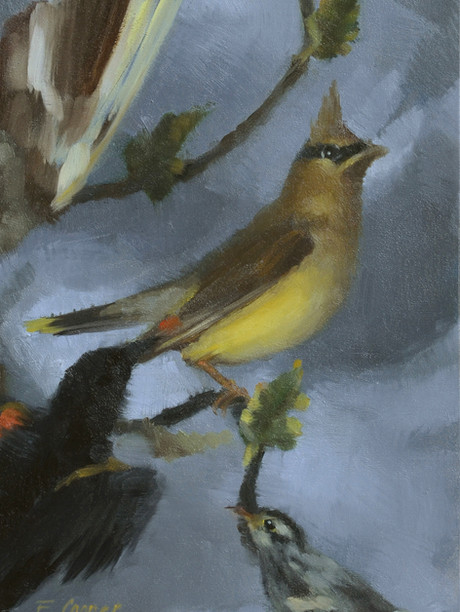"""""""Birds of the Shadowbox"""" Private Collection 9x6"""" Oil on panel"""