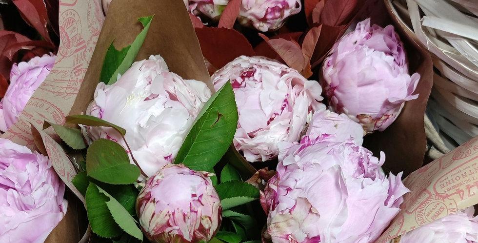 Bouquet 7 pivoines