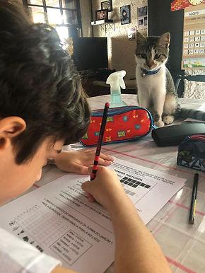 Escolas privadas pedem a volta da educação infantil em Niterói