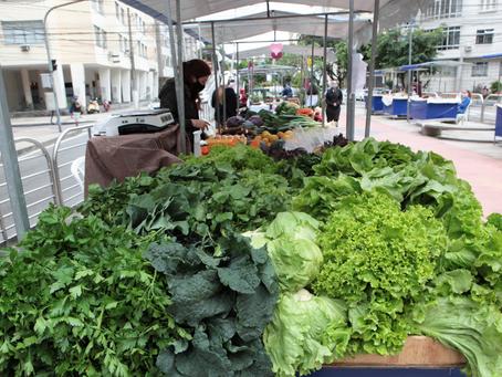 Niterói estimula a produção local de alimentos: hortifrutis, queijos, ovos, mel e embutidos