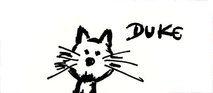 Duke, o gato e os quadrinhos surgidos na pandemia em Niterói
