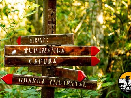 Confira seis trilhas de Niterói para quem quer começar a se aventurar
