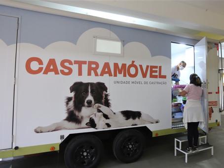 Castramóvel chega a Várzea das Moças com castração gratuita de cães e gatos