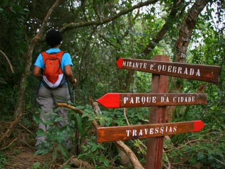 Um guia para percorrer as trilhas de Niterói