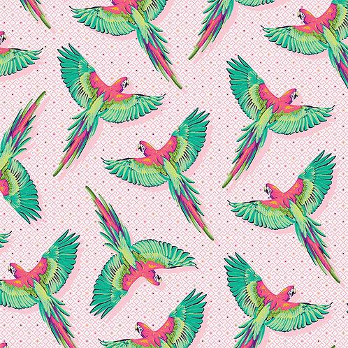 Macaw Ya Later - Dragonfruit