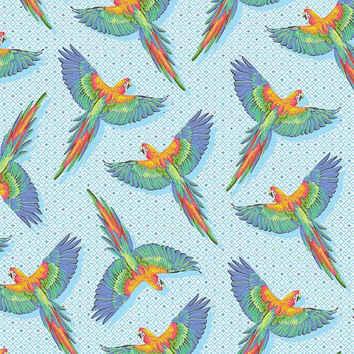 Macaw Ya Later - Cloud