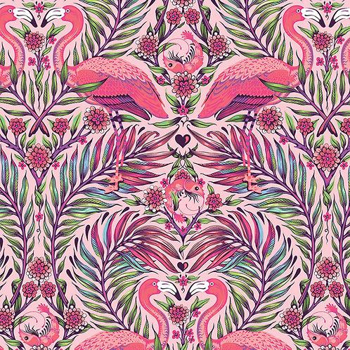 Pretty in Pink - Dragonfruit