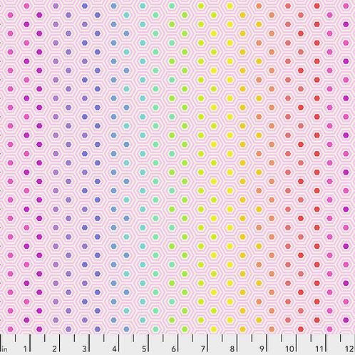 Hexy Rainbow - Shell