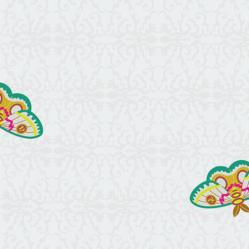 Rainbow 100 Moth - Day