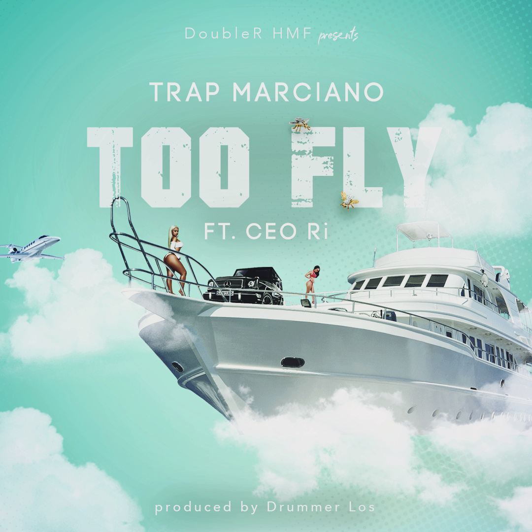 Too Fly Cover