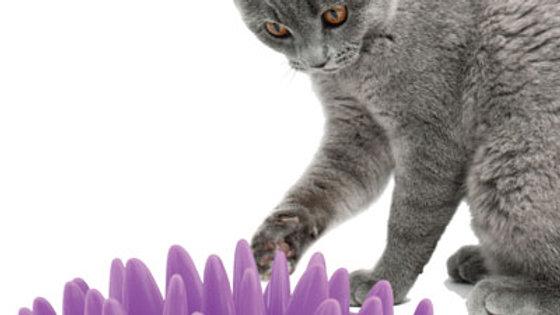 Catch - Interactive Cat Feeder