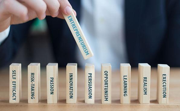 Entrepreneurism-summary.jpg