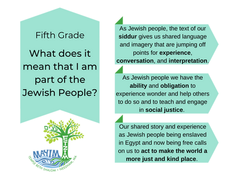 5 Curriculum (transparent).png