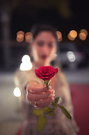 selective-focus-photo-of-red-rose-132499