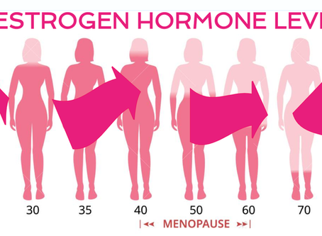 Estrogen Explained