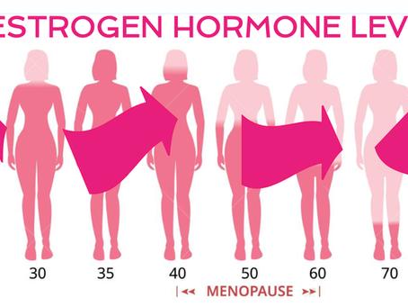 Estrogen Explained