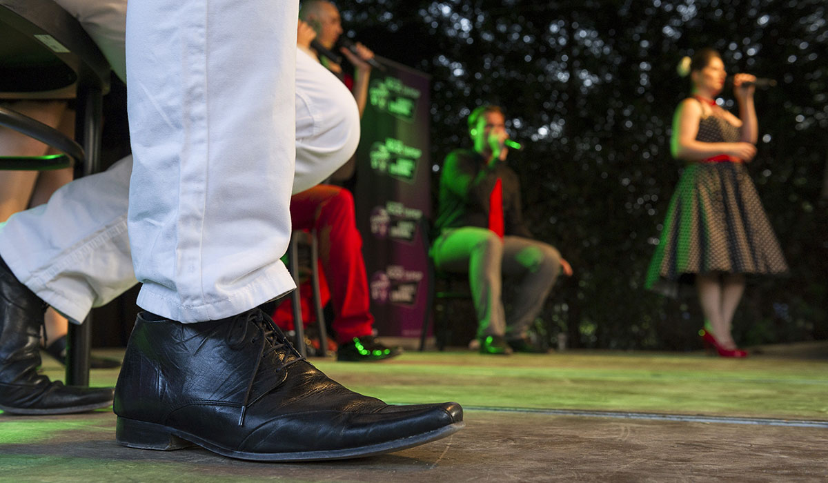 Folestival2014-Jean-Marc-Quinet-Witloof_Bay_15