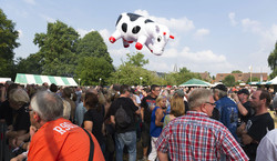 Folestival2014-Jean-Marc-Quinet-Ambiance-15-2