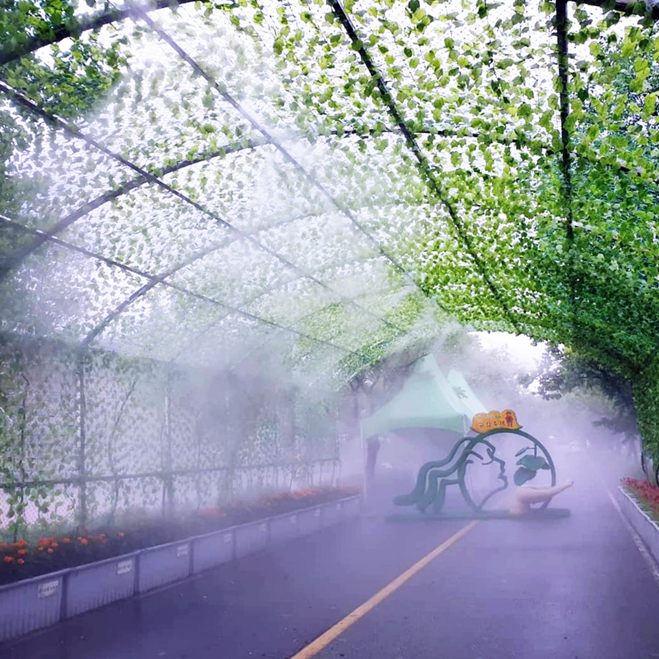 양구 빛의터널