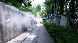 대전 삼일운동길 90계단