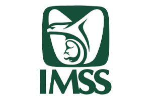 logo-imss.jpg