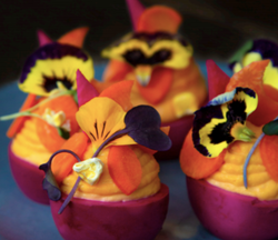 Spotlight On: Deviled Eggs